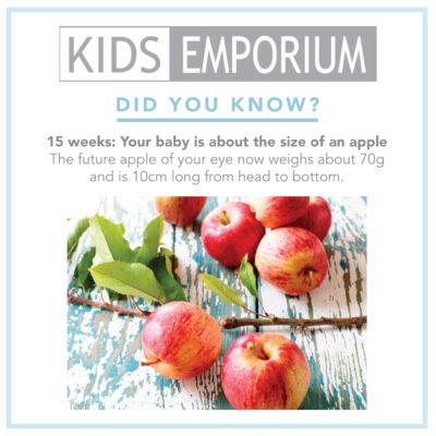 Week 15 | Kids Emporium