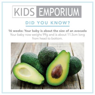 Week 16 | Kids Emporium