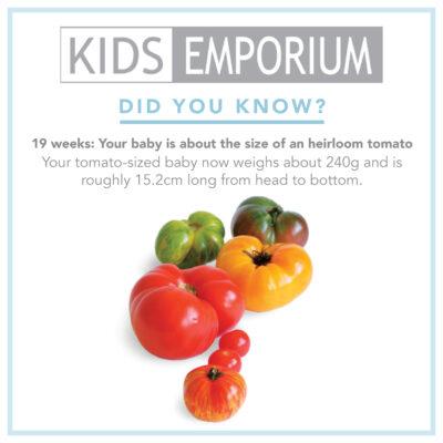 Week 19 | Kids Emporium