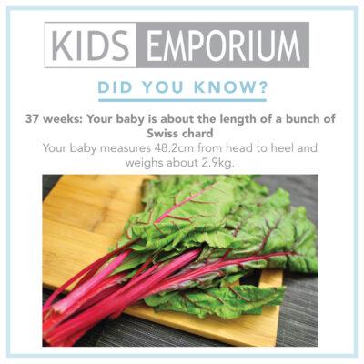 Week 36 }Kids emporium