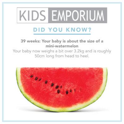 Week 39 | Kids emporium