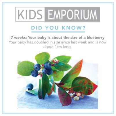 Week 7 | Kids emporium