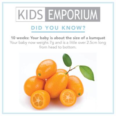 Week 10 | Kids Emporium
