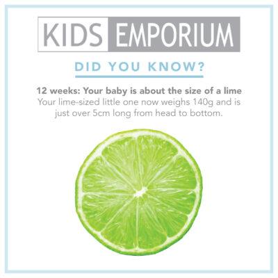 Week 12 | Kids Emporium