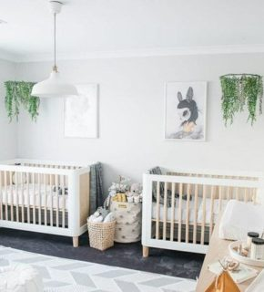 Twin-spired!  (Nursery for twins)