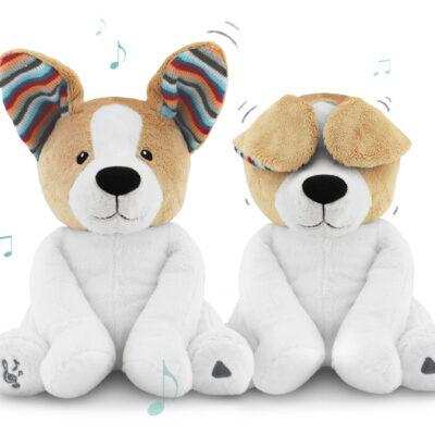 Zazu - Danny - Peek-A-Boo-Dog 1